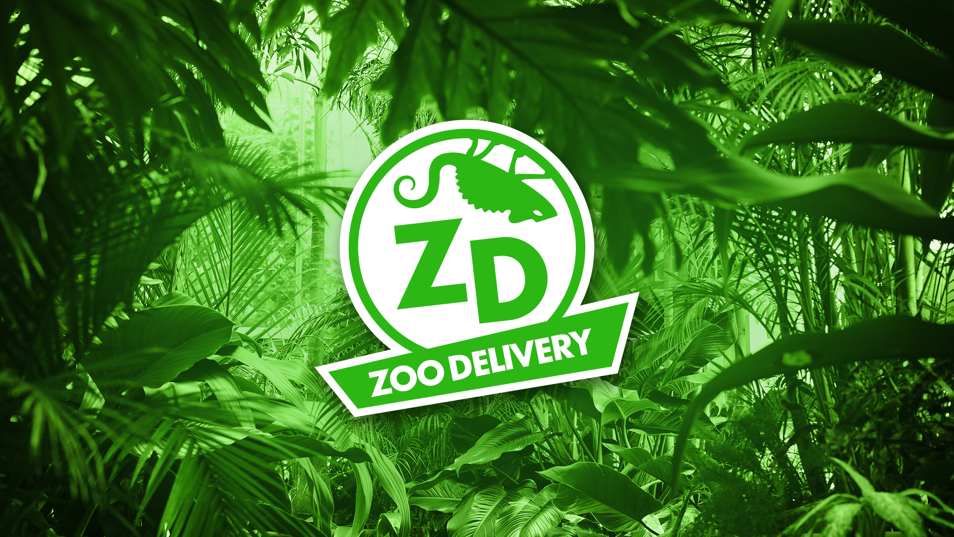 CAR - Zoo Delivery